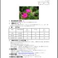 詳細PDF 詳細は、画像をクリックしてください。PDFが開きます。 概要 通巻第5605号 7 月 号 平成29年7月6日発行 宮崎県 宮崎地方気象台  【特に注意を要する事項】 期間の前半は気温がかなり高くなる可能性 […]