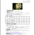 詳細PDF 詳細は、画像をクリックしてください。PDFが開きます。 概要 通巻第5606号 8 月 号 平成29年8月3日発行 宮崎県 宮崎地方気象台  【特に注意を要する事項】 期間の前半は気温がかなり高くなる可能性 […]