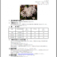 詳細PDF 詳細は、画像をクリックしてください。PDFが開きます。 概要 通巻第5611号 1 月 号 平成29年12月28日発行 宮崎県 宮崎地方気象台 【特に注意を要する事項】 期間のはじめは、気温の低い状態が続く見 […]