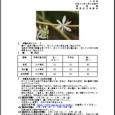 詳細PDF 詳細は、画像をクリックしてください。PDFが開きます。 概要 通巻第5615号 5 月 号 平成30年5月3日発行 宮崎県 宮崎地方気象台  【特に注意を要する事項】  【予報のポイン […]
