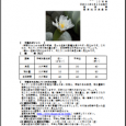 詳細PDF 詳細は、画像をクリックしてください。PDFが開きます。 概要 通巻第5620号 10 月 号 平成30年9月28日発行 宮崎県 宮崎地方気象台  【特に注意を要する事項】 特になし。 【予報のポイ […]