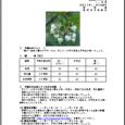 詳細PDF 詳細は、画像をクリックしてください。PDFが開きます。 概要 通巻第5621号 11 月 号 平成30年11月8日発行 宮崎県 宮崎地方気象台  【特に注意を要する事項】 特になし。 【予報のポイ […]