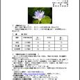 詳細PDF 詳細は、画像をクリックしてください。PDFが開きます。 概要 通巻第5624号 2 月 号 平成31年2月7日発行 宮崎県 宮崎地方気象台  【特に注意を要する事項】 特になし。 【予報のポイント […]