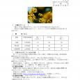 詳細PDF 詳細は、画像をクリックしてください。PDFが開きます。 概要 通巻第5625号 3 月 号 平成31年3月7日発行 宮崎県 宮崎地方気象台  【特に注意を要する事項】 特になし。 【予報のポイント […]
