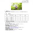 詳細PDF 詳細は、画像をクリックしてください。PDFが開きます。 概要 通巻第5638号 4 月 号 令和2年3月26日発行 宮崎県 宮崎地方気象台   【予報のポイント】 期間のはじめは暖かい […]
