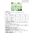 詳細PDF 詳細は、画像をクリックしてください。PDFが開きます。 概要 通巻第5639号 5 月 号 令和2年4月30日発行 宮崎県 宮崎地方気象台   【予報のポイント】 暖かい空気に覆われや […]